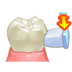 歯磨き習慣を徹底指導